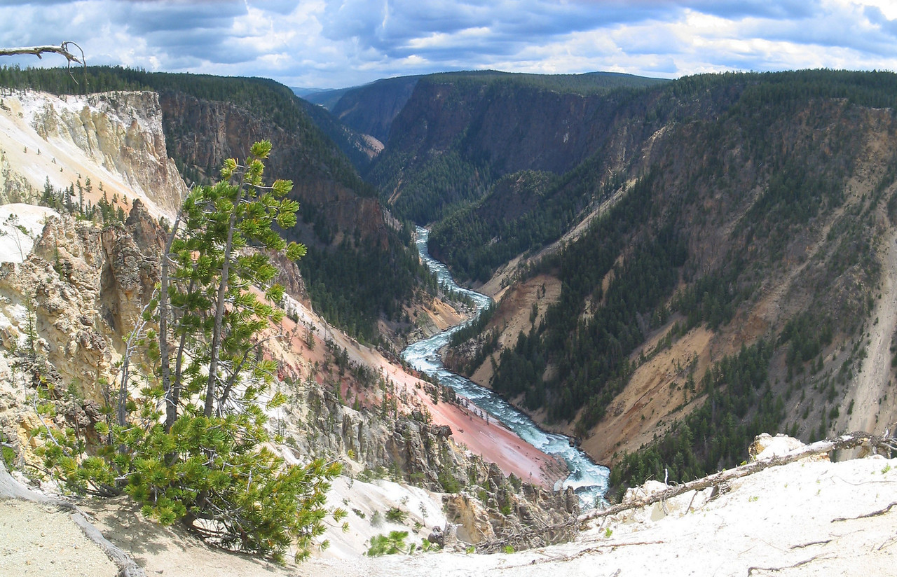 Yellowstones's Best016
