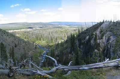 Yellowstones's Best082