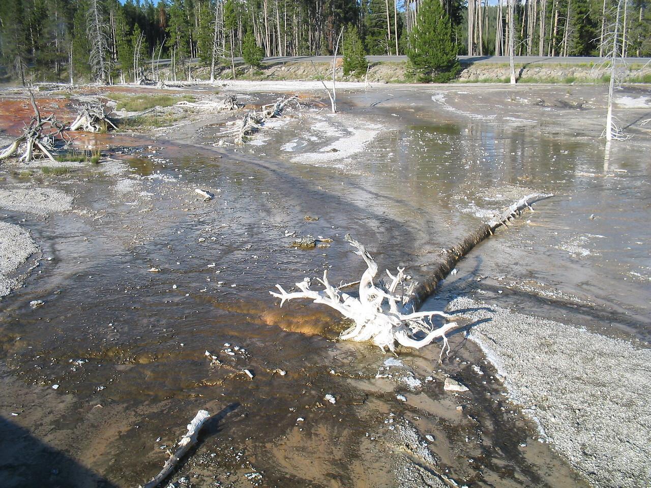 Yellowstones's Best034