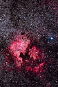 North America Nebula NGC 7000 in Cygnus