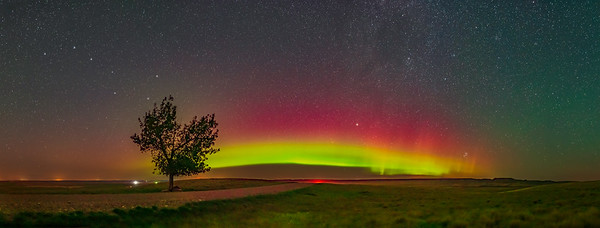Aurora Panorama from Grasslands (Aug 26, 2019)