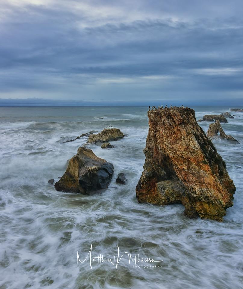 Shell Beach 4