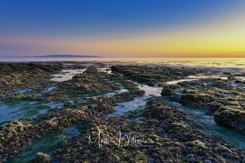 Low Tide Light