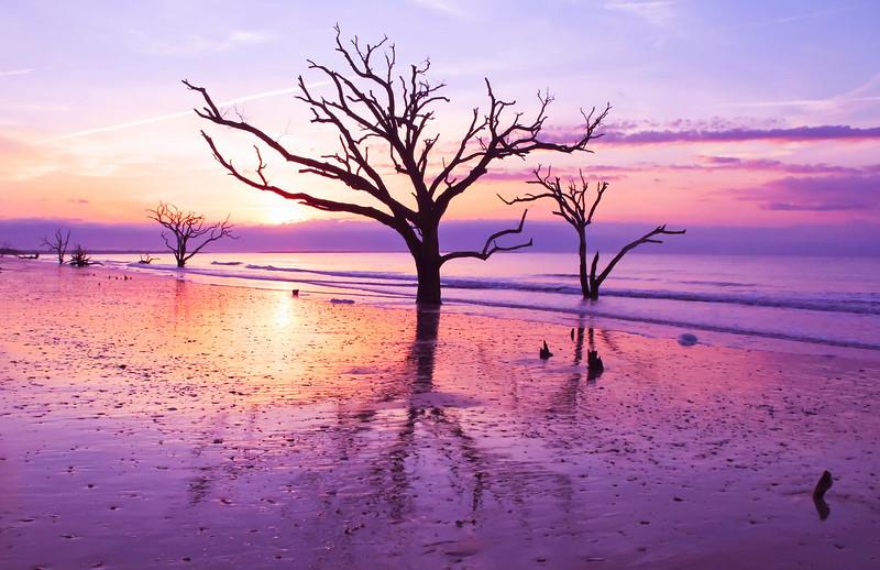 Botany Bay, Edisto Island, SC.