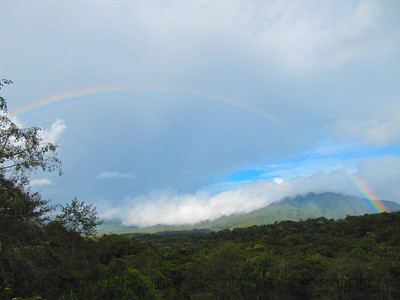 Cloud Forest Rainbow