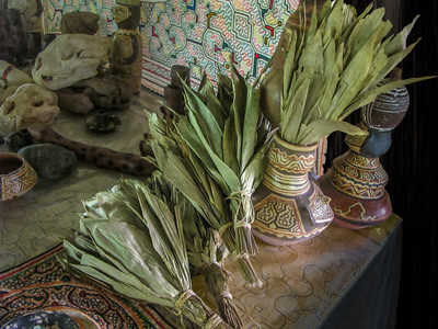Schacapa Leaf Rattles & Ayahuasca Mesa