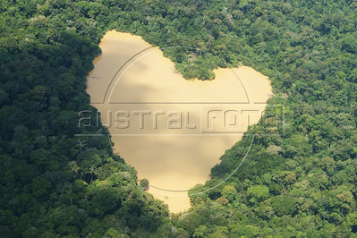 A heart-shaped lake in the Amazon rain forest. (Australfoto/Ivan Canabrava)