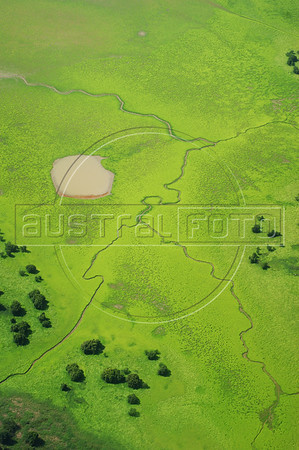 Aerial view of the Amazon rain forest. (Australfoto/Ivan Canabrava)