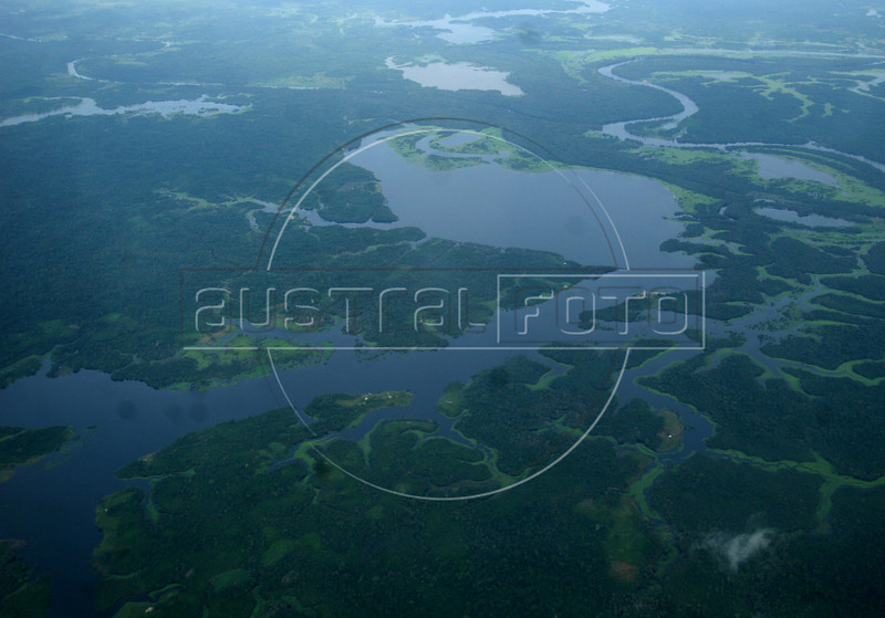 A view of the immense Amazon forest in the state of Amazonas, Jan. 31, 2007.(Australfoto/Douglas Engle)