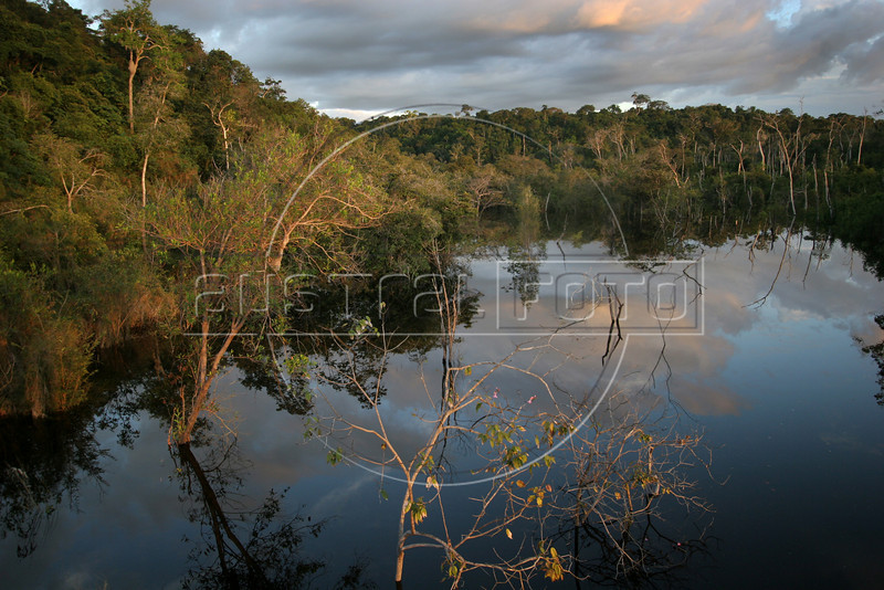 A river in the immense Amazon forest in the state of Amazonas, Feb 5, 2007.(Australfoto/Douglas Engle)