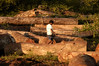 A man walks between logs which will be cut into planks at a saw mill in Brazil's western state of Rondonia, Oct. 28, 2004. About one-fifth of the state, which borders Bolivia, has been deforested since intensive settlement began in the 1970s. The main highway was paved in the 1960s, and as any satellite map can show, there is a direct link of road construction and forest destruction. As roads improve, migration increases and forest is cleared to make way got ranches and towns. A majority of its citizens now live in urban areas. It is a main exporter of wood, as well as a significant producer of both coffee and and as a result of deforestation, cattle is important.(Australfoto/Douglas Engle)