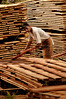 Enio Rodrigues, 18, moves freshly cut wood planks at a saw mill in Brazil's western state of Rondonia, Oct. 27, 2004. About one-fifth of the state, which borders Bolivia, has been deforested since intensive settlement began in the 1970s. The main highway was paved in the 1960s, and as any satellite map can show, there is a direct link of road construction and forest destruction. As roads improve, migration increases and forest is cleared to make way got ranches and towns. A majority of its citizens now live in urban areas. It is a main exporter of wood, as well as a significant producer of both coffee and and as a result of deforestation, cattle is important. (Australfoto/Douglas Engle)
