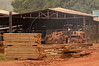 A worker drives a wood-carrying vehicle past wood planks at a saw mill in Brazil's western state of Rondonia, Oct. 27, 2004. About one-fifth of the state, which borders Bolivia, has been deforested since intensive settlement began in the 1970s. The main highway was paved in the 1960s, and as any satellite map can show, there is a direct link of road construction and forest destruction. As roads improve, migration increases and forest is cleared to make way got ranches and towns. A majority of its citizens now live in urban areas. It is a main exporter of wood, as well as a significant producer of both coffee and and as a result of deforestation, cattle is important. (Australfoto/Douglas Engle)