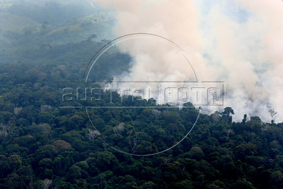 Smoke billows from fires to clear land in the Brazilian Amazonian state of Para. (Australfoto/Douglas Engle)