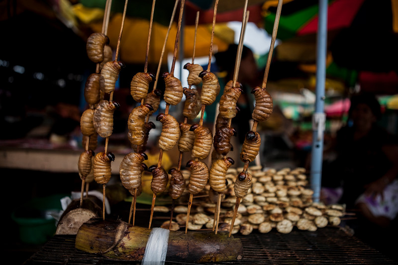Fried Suri worms at Nannay port en route the Amazon forest, Peru