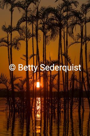 Sunset, Laguna Grande