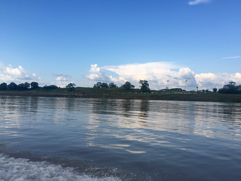 The Amazon river on the Brazilian side