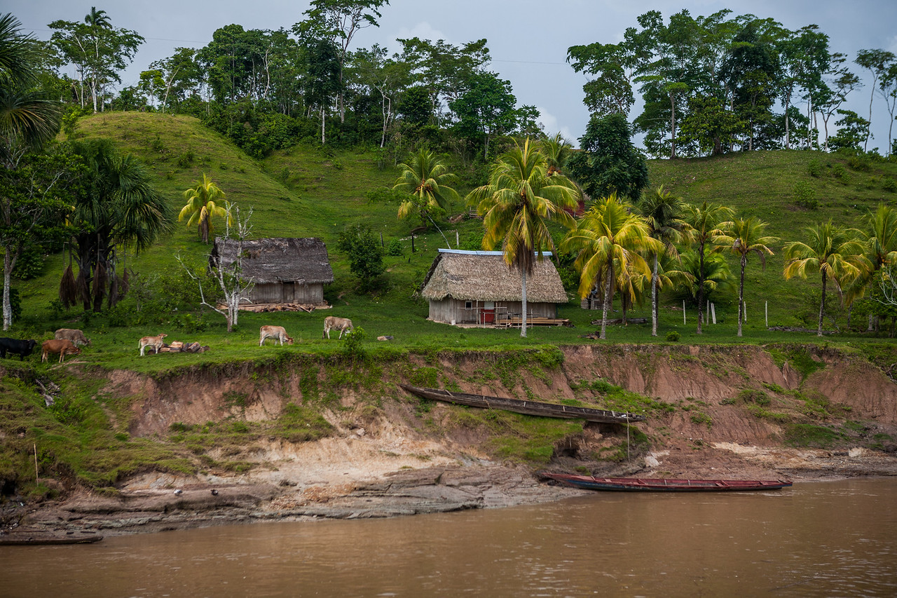 A typical isolated village along the Amazon river, Peru
