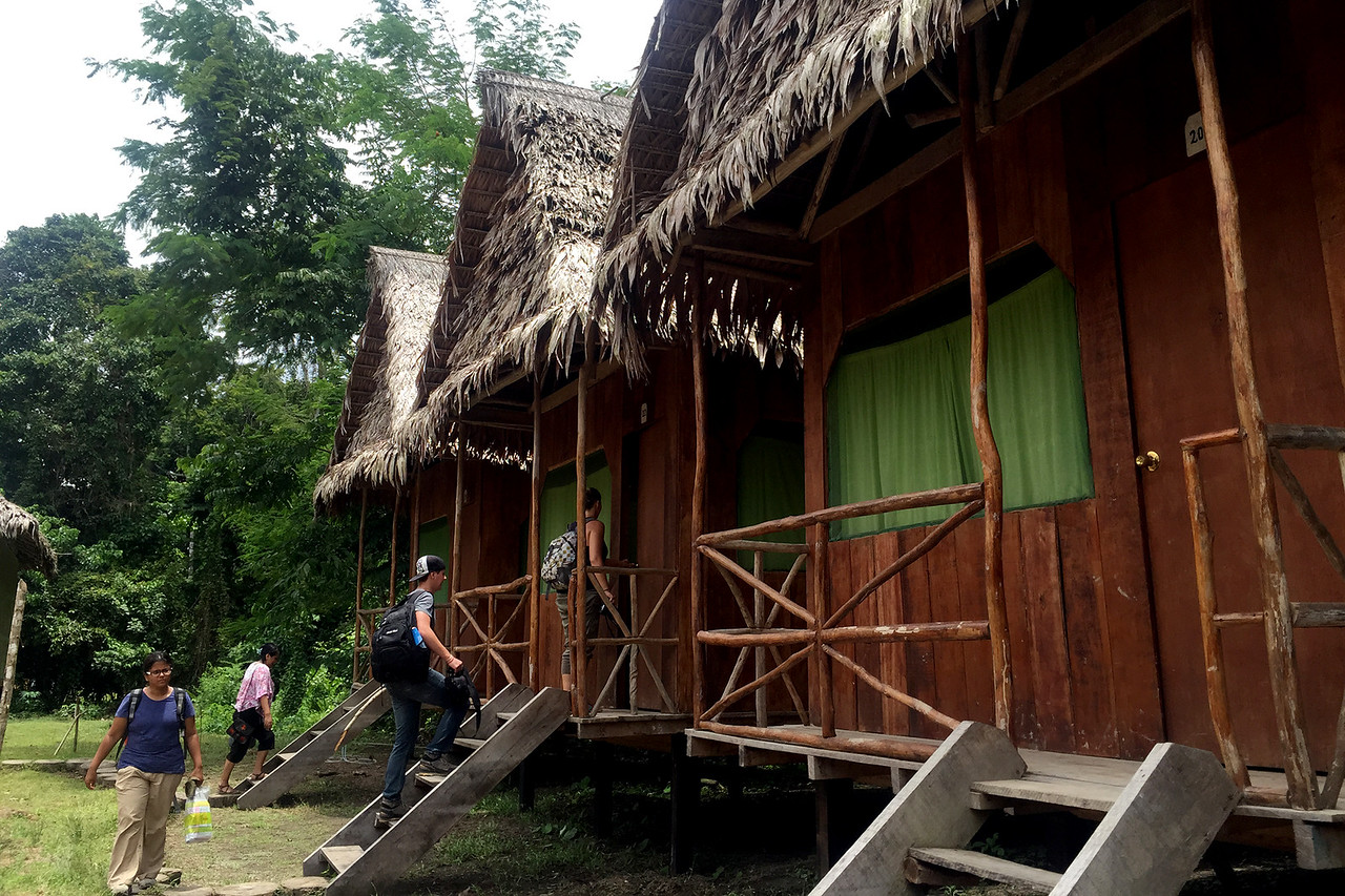 Our huts at the lodge during the tour of the Amazon forest, Peru