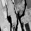Une ombre plane... Sous les platanes..