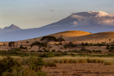 But away from the water it is very dusty and dry even in the shadow of Kilimanjaro with snow on the top