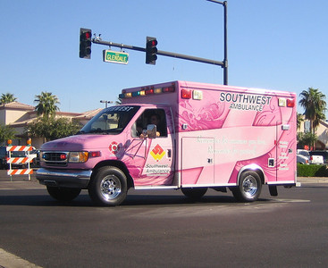 SWA Pink Ribbon W-481 Ford