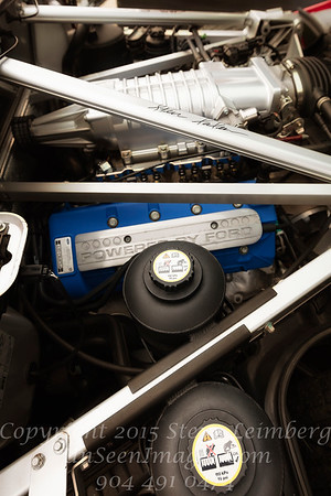 Ford Engine - Copyright 2017 Steve Leimberg - UnSeenImages Com _Z2A6802