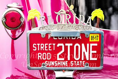 License Plate Sunshine State - Copyright 2017 Steve Leimberg - UnSeenImages Com _Z2A7041