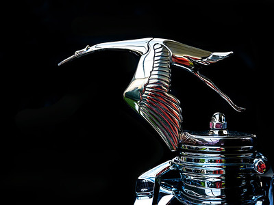 Flying Goose Hood Ornament Copyright 2020 Steve Leimberg UnSeenImages Com _DSF7226