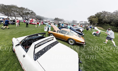 Concours in Fog - Copyright 2017 Steve Leimberg - UnSeenImages Com _Z2A7245
