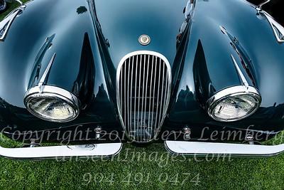 Jaguar - Copyright 2017 Steve Leimberg - UnSeenImages Com _Z2A7247