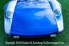 Blue Bomber - Copyright 2015 Steve Leimberg - UnSeenImages Com _H1R8331
