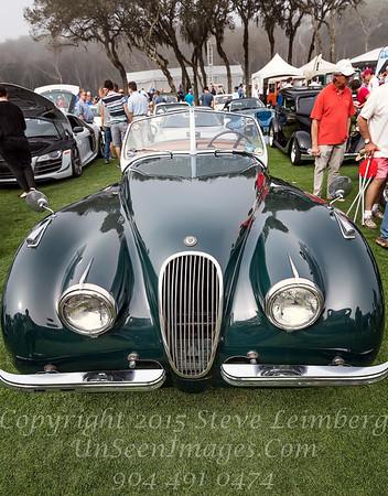 Jaguar - Copyright 2017 Steve Leimberg - UnSeenImages Com _Z2A7253