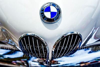 BMW Hood - Copyright 2017 Steve Leimberg - UnSeenImages Com _Z2A6096