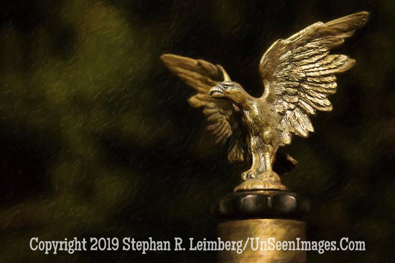 American Eagle Hood Ornament - Copyright 2015 Steve Leimberg - UnSeenImages Com _H1R2902
