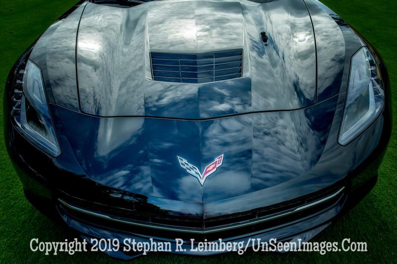 Corvette - Copyright 2015 Steve Leimberg - UnSeenImages Com _H1R8102