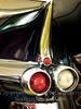 Caddy Fins - Copyright 2016 Steve Leimberg  - UnSeenImages Com _M1A7641