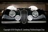 Jaguar - Copyright 2015 Steve Leimberg - UnSeenImages Com _H1R7682