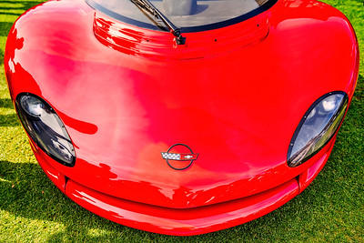 Red Corvette  Copyright 2021 Steve Leimberg UnSeenImages Com   _DSC2002