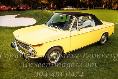 Yellow BMW - Copyright 2017 Steve Leimberg - UnSeenImages Com _Z2A6497