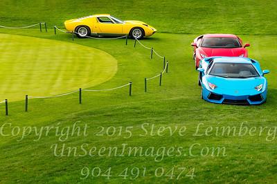 Three Cars Copyright 2017 Steve Leimberg - UnSeenImages Com _Z2A6476