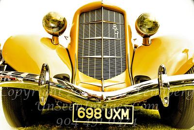 698 UXM - Yellow Fellow - Copyright 2017 Steve Leimberg - UnSeenImages Com _Z2A6377