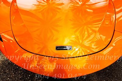 McLaren - Copyright 2017 Steve Leimberg - UnSeenImages Com _Z2A6166