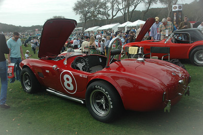 Mike Stott's 1964 AC Cobra