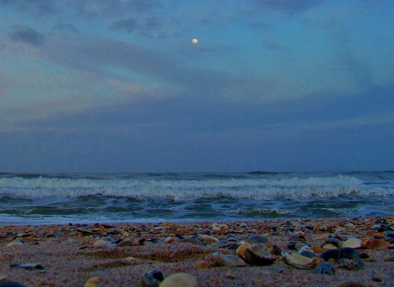 Good Night Moon 4.2.15