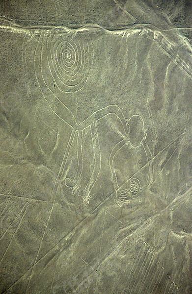 Nazca- Monkey