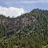 Forest Canyon Photograph 13
