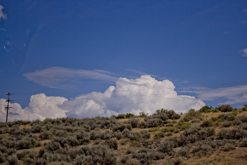 Forest Canyon Photograph 6
