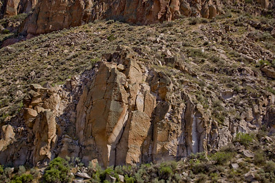Forest Canyon Photograph 2