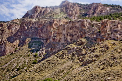 Forest Canyon Photograph 3